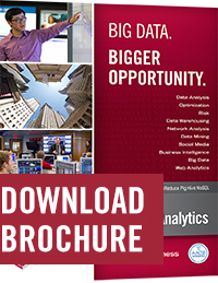 Brochure for the master's in Business Intelligence & Analytics.
