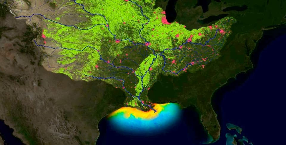 image of Gulf of Mexico dead zone and rivers flowing into it