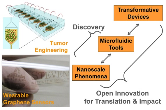 Graphic illustrating what the Nano Micro Bio research group studies