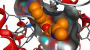 3D computerized image of a protein molcule