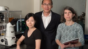 Professor Woo Lee working with students in his lab