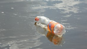 empty plastic bottle floating on water