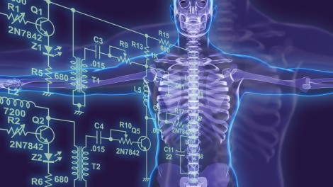 an overview of biomedical engineering Biomedical engineering is, by nature, an interdisciplinary endeavor new advances require a variety of experimental and conceptual approaches.