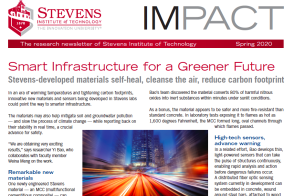 cover of spring 2020 issue of IMPACT