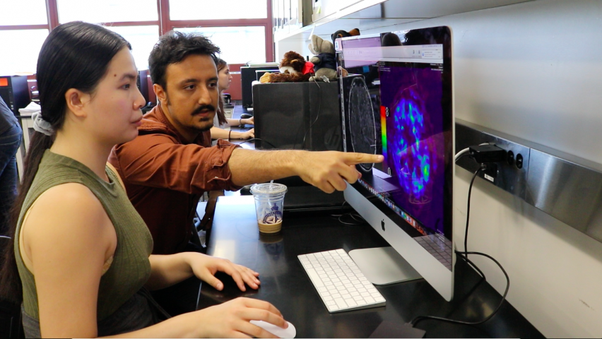 Jing Li, a member of the Class of 2018, and assistant professor Mehmet Kurt review an image of the brain