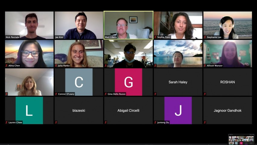 Screenshot of Zoom conference of Summer Research Project participants