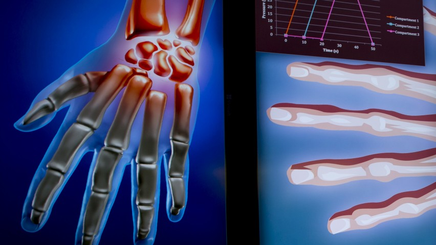 Large-screen visualizations of human hand