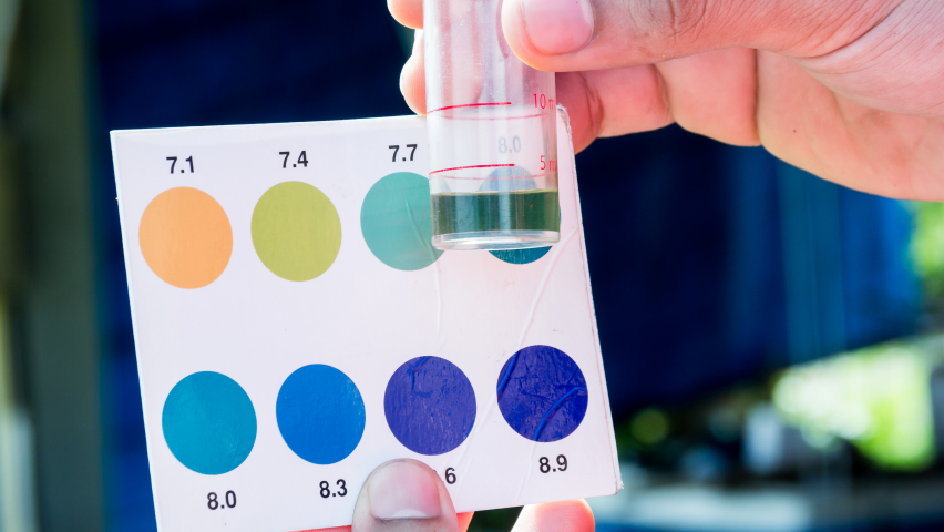Photo of water pH test