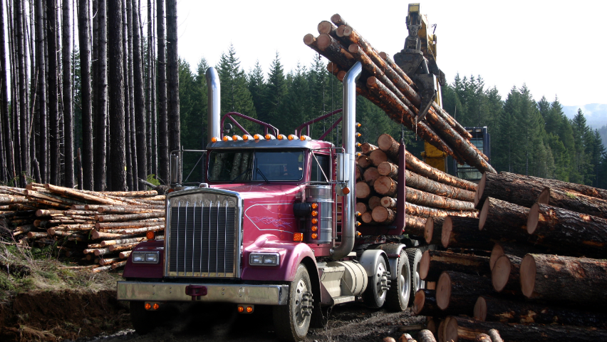 Photo of truck transporting logs