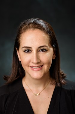 Dr. Yeganeh M. Hayeri, Stevens School of Systems and Enterprises