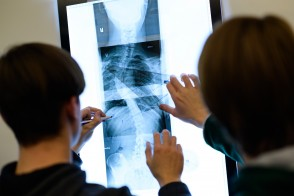 Students reviewing xrays