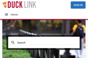 image of ducklink interface
